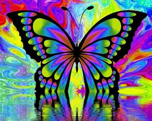 Abbildung: abstraktes Bild eines Schmetterlings in bunten Farben als Logo des Visiana-Liedes